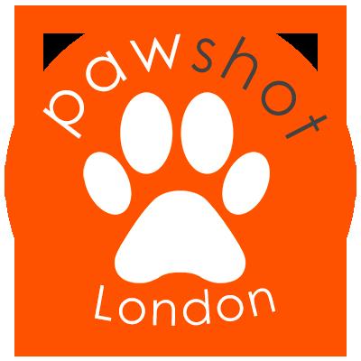 PawShot UK - Dog Photographers London